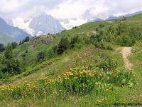 Wędrówki po Kaukazie