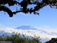 Śniegi Kilimandżaro
