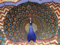 Baśniowa kraina maharadżów i indyjska mozaika