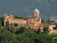 Rowerem pośród winnic Alzacji