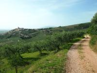 Umbria - zielone serce Włoch