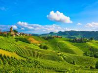Od winnic Piemontu po Cinque Terre