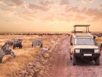 Namibia - w stronę słońca