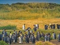 Patagonia - z aparatem na Końcu Świata