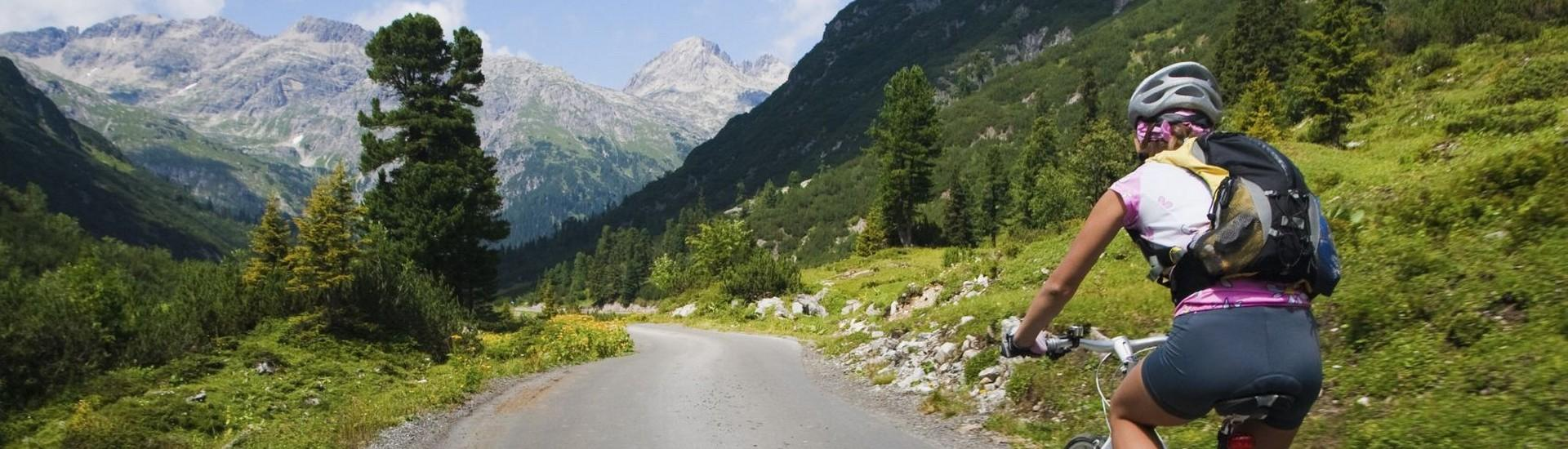 Alpejskimi dolinami