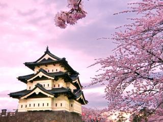 Japonia - od wulkanów północy po tropiki południa