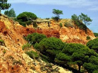 Przyroda południowej Portugalii
