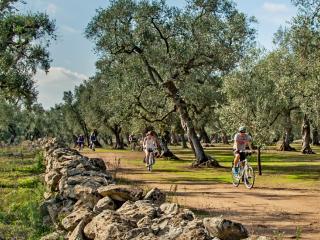 Rowerowa Apulia - dookoła Salento